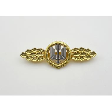 Long Range Day Fighter  Squadron Clasp in Gold